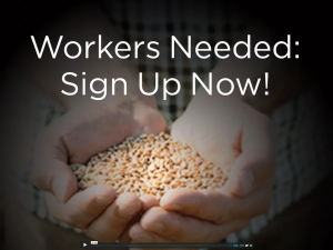 Workers Needed: Sign Up Now