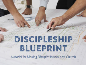 Who is the Discipleship Blueprint For?