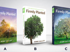 Announcing 3 Giveaways For Voting For The New Book Cover