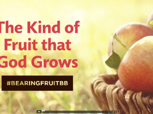 Bearing Fruit: The Kind of Fruit that God Grows