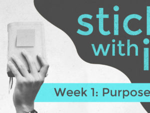 Stick With It! – Purpose